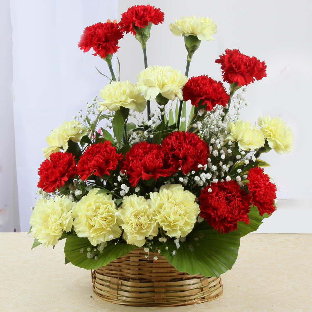 Arrangement of Red and Yellow Carnations