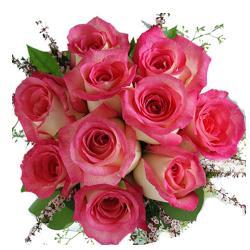 10 Dark Pink Roses Bunch