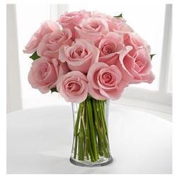 10 Light Pink Roses In Vase