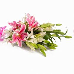 10 Stem of Mix Color Lilies Hand Tied Bunch