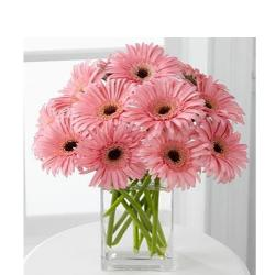 12 lovely pink gerberas In Glass vase