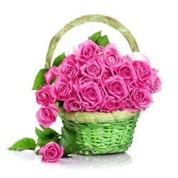 21 Pink Roses Basket