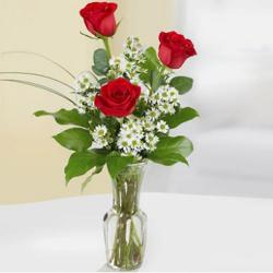 3 red roses in the designer glass vase