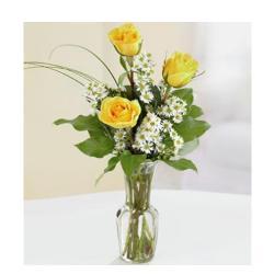 3 Yellow Roses In Vase