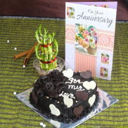 Anniversary Chocolate Cake with Greeting Card and Good Luck Plant