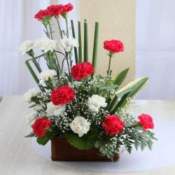 Arrangement of Twin Color Carnation