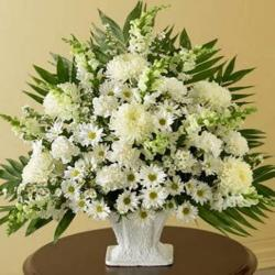 Basket of 50 White Flowers