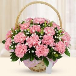 Basket of Pink Carnations
