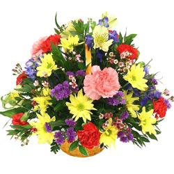 Basket Of Spring Blooms