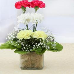 Beautiful Carnations Glass Vase