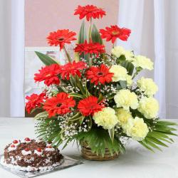 Black Forest Cake with Carnation and Gerberas Arrangement