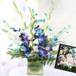 Blue and White Orchids in a Glass Vase
