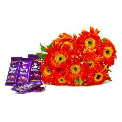 Bouquet of 10 Orange Gerberas with Cadbury Dairy Milk Chocolate Bars