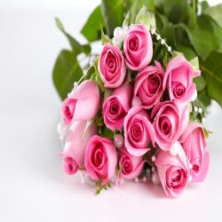 Bouquet of 13 Pink Roses