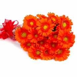 Bouquet of 15 Orange Gerberas with Cellophane Packing