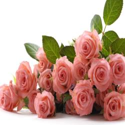Bouquet of 17 Pink Roses