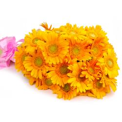Bouquet of 20 Yellow Gerberas with Tissue Wrapping