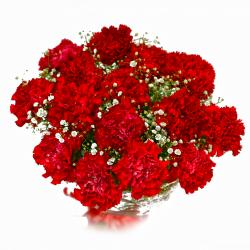 Bouquet of Fifteen Red Carnations