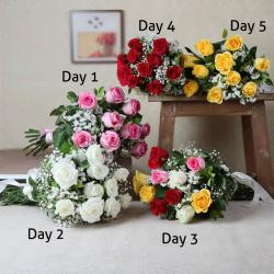 Bouquet of Five Day Serenade Delivery