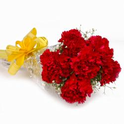 Bouquet of Fresh 6 Red Carnations Cellophane Wrapped