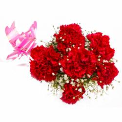 Bouquet of Fresh 6 Red Carnations in Tissue Wrapped