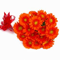 Bouquet of Fresh Fifteen Orange Gerberas Tissue Packed