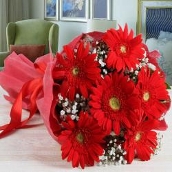 Bouquet of Red Gerberas in Tissue