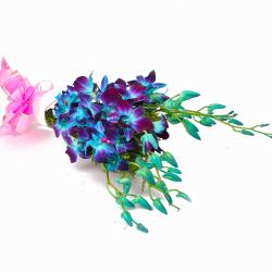 Bouquet of Six Blue Orchids Tissue Paper Wrapped