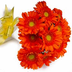 Bouquet of Ten Orange Gerberas in Tissue Wrapped