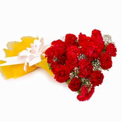 Bouquet of Twenty Red Carnations Tissue Wrapped