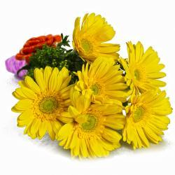 Bouquet of Yellow Gerberas