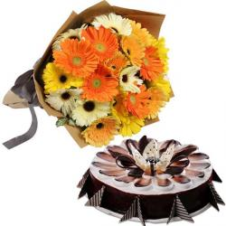 Bright full Gerberas With Chocolate Cake