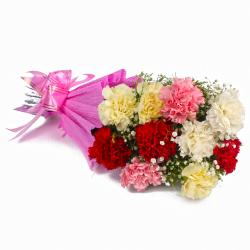 Bunch of 10 Mix Carnations in Tissue Wrapped