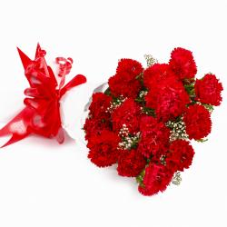 Bunch of Fifteen Red Carnations Tissue Wrapped