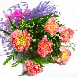 Bunch of Six Pink Carnations