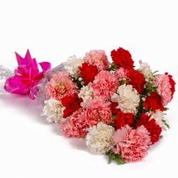 Charming Bouquet of 24 Mix Carnations