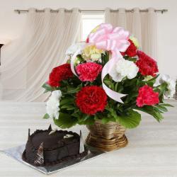 Chocolate Truffle Cake with Mixed Carnations Basket