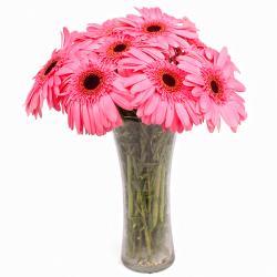 Classic Vase of 10 Pink Gerberas