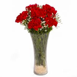 Classic Vase with Red Carnations