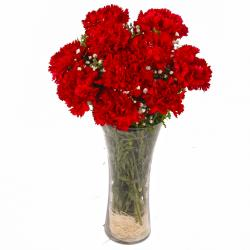 Classical Vase of Ten Love Red Carnations