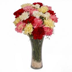Colorful 21 Carnations in Glass Vase