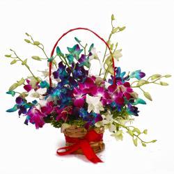 Colorful Fifteen Orchids Arrangement