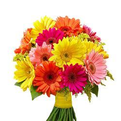 Colorful Gerberas Bouquet