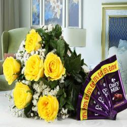 Combo of Yellow Roses with Cadbury Dairy Milk Chocolates
