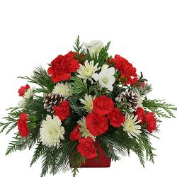 Daises and Carnation Bouquet