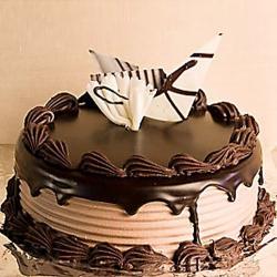 Dark Chocolate Delight Cake