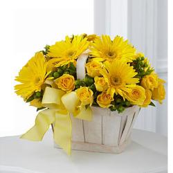 Dazzling Yellow Flower Arrangement