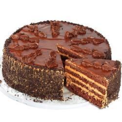 Delicious Designer Chocolate Cake