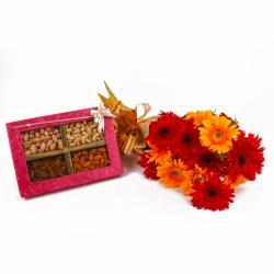 Dozen Gerberas Bunch with Assorted Dryfruits Box