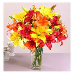 Dozen Lilies in Vase